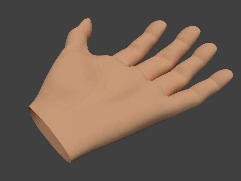 http://wanfive.free.fr/wip/anatomy/hand02.jpg